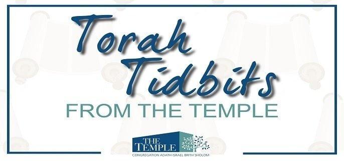Torah Tidbits - Study Judaism with Rabbi Rapport and Rabbi David. Ki Tisa Tetzaveh Pekudei Vayikra (Leviticus 1:1−5:26)The opening word of Leviticus that gives the book and this first parashah its name is Vayikra Tazria Metzorah Achrei Mot Emor B'har B'hukotai Sh'lach L'cha Korach Matot Masei D'varim Va-et'chanan Eikev Nitzavim Chayei Sarah Tol'dot